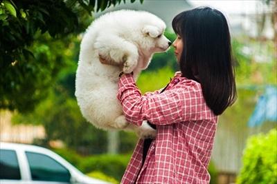 アイコンタクトはトレーニング・飼育において重要