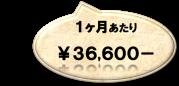 約¥36,600