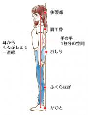 立位での良い姿勢線を表したイラストです