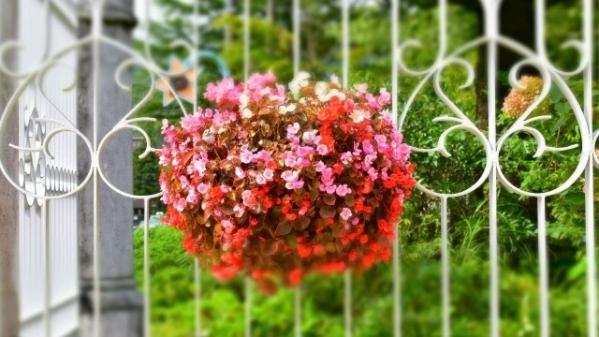 お客様からのご感想 赤い花束の飾り